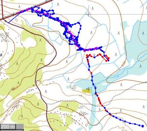 Oran 1. karhuhaukku 05.09.2017. Vaaleanpunaisella Anun reitti, lähellä se jo käytätti ennenkuin sai hajun ihmisestä
