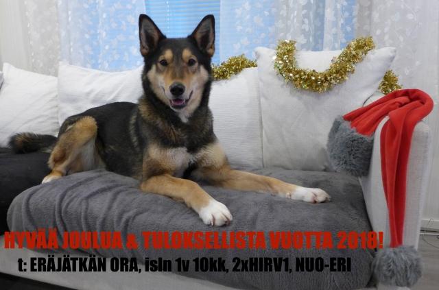 Erajatkan Ora Hyvaa Joulua III 2017