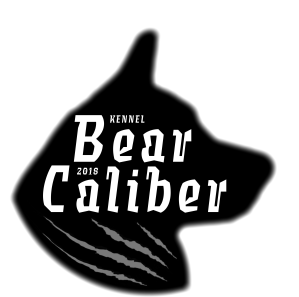 Kennel Bear Caliber logo 2020 Anu Lipsanen